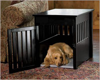 42PY Dog Crate Crate Training