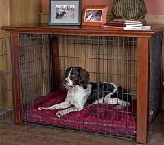 dog in designer crate